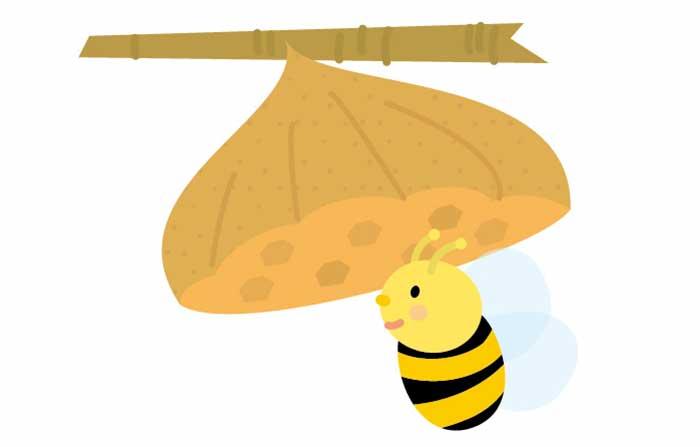 こわい蜂に効果的?木酢液をペットボトルに入れて庭に設置してみた